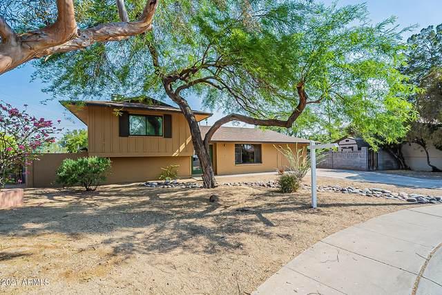 8743 E Orange Blossom Lane, Scottsdale, AZ 85250 (MLS #6252082) :: My Home Group