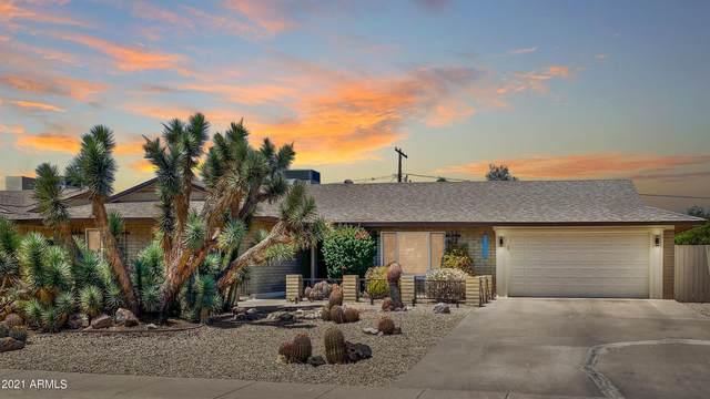 10222 N 34TH Place, Phoenix, AZ 85028 (MLS #6252088) :: Arizona Home Group