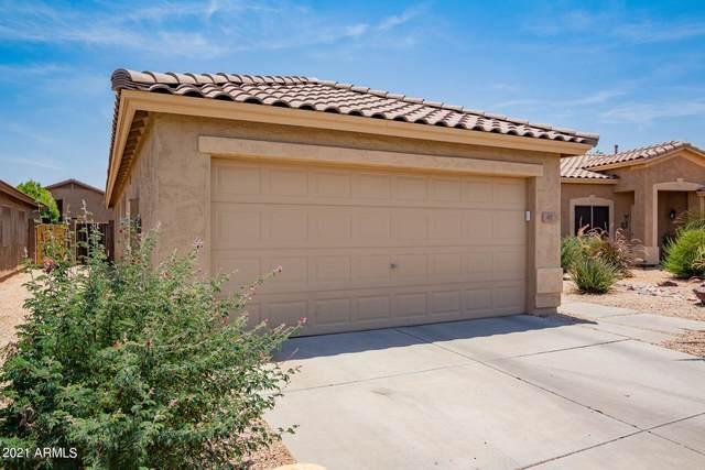 97 E Coral Bean Drive, San Tan Valley, AZ 85143 (MLS #6252108) :: Yost Realty Group at RE/MAX Casa Grande