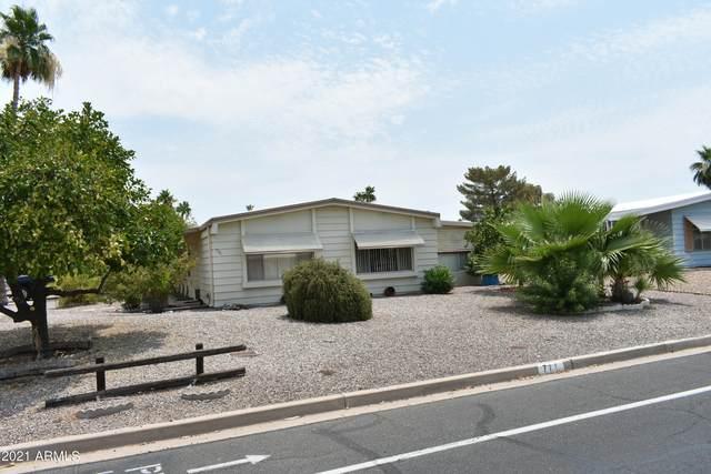 711 S Park View Circle, Mesa, AZ 85208 (MLS #6252151) :: Power Realty Group Model Home Center