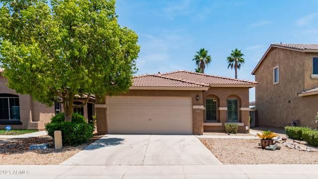 20569 N Ancon Avenue, Maricopa, AZ 85139 (MLS #6252192) :: Executive Realty Advisors