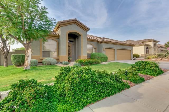 17676 W Eagle Drive, Goodyear, AZ 85338 (MLS #6252221) :: The Laughton Team