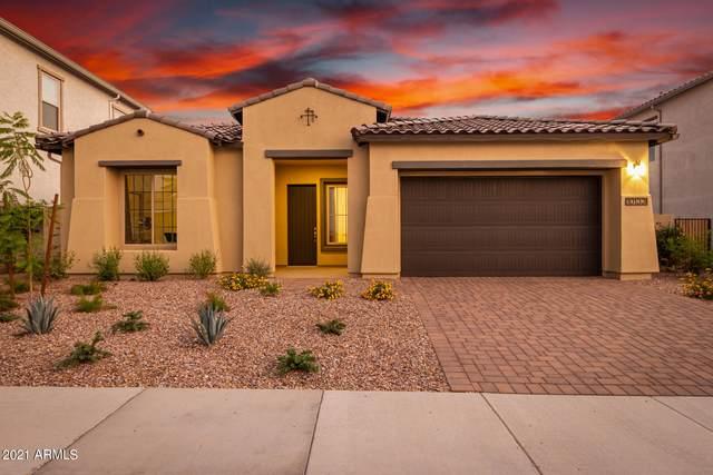 10133 E Strobe Avenue, Mesa, AZ 85212 (MLS #6252238) :: Arizona Home Group