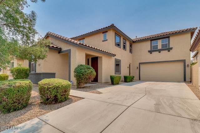 1705 W Pelican Drive, Chandler, AZ 85286 (MLS #6252311) :: Yost Realty Group at RE/MAX Casa Grande