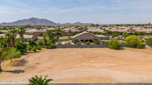 2307 E Bella Vista Court, Gilbert, AZ 85298 (MLS #6252315) :: Executive Realty Advisors