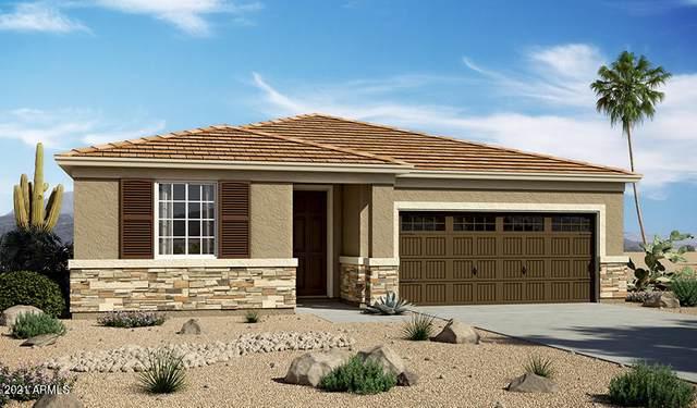 10010 E Hay Loft Road, Florence, AZ 85132 (MLS #6252316) :: Yost Realty Group at RE/MAX Casa Grande