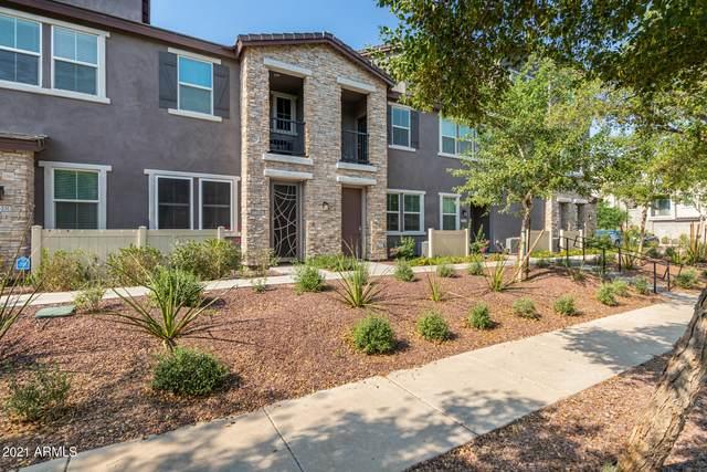 2344 E Hidalgo Avenue, Phoenix, AZ 85040 (MLS #6252415) :: Dave Fernandez Team | HomeSmart