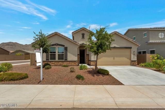 21362 W Berkeley Road, Buckeye, AZ 85396 (MLS #6252432) :: Power Realty Group Model Home Center