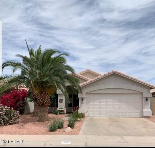 381 S Silverbrush Drive, Chandler, AZ 85226 (MLS #6252470) :: Yost Realty Group at RE/MAX Casa Grande