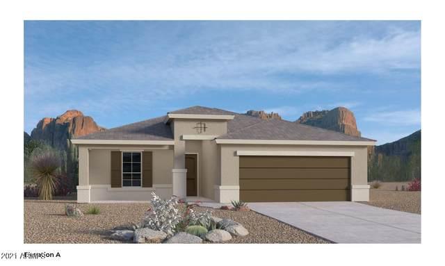 38115 W San Clemente Street, Maricopa, AZ 85138 (MLS #6252485) :: The Laughton Team
