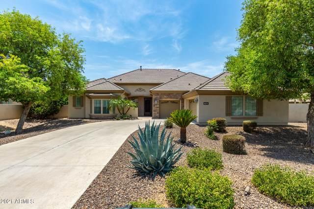793 E Fieldstone Place, Chandler, AZ 85249 (MLS #6252500) :: Dave Fernandez Team | HomeSmart