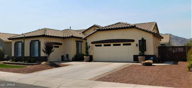 3329 W Latona Road, Laveen, AZ 85339 (MLS #6252506) :: Openshaw Real Estate Group in partnership with The Jesse Herfel Real Estate Group