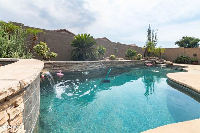 8473 W Buckhorn Trail, Peoria, AZ 85383 (MLS #6252525) :: Maison DeBlanc Real Estate