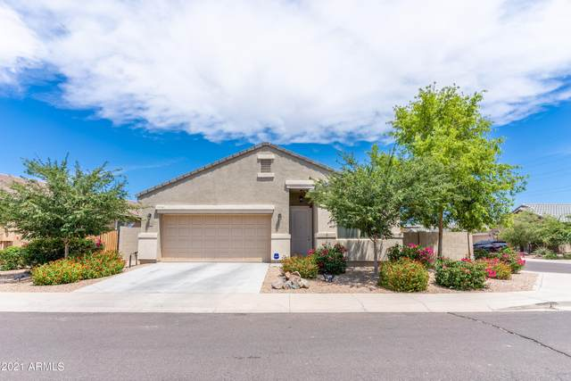 41028 W Somers Drive, Maricopa, AZ 85138 (MLS #6252552) :: CANAM Realty Group