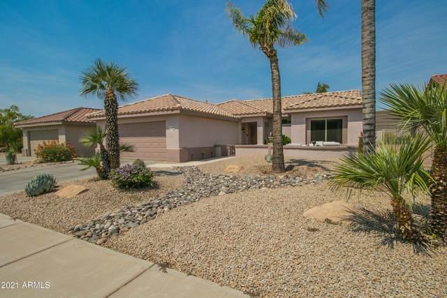 17520 N Estrella Vista Drive, Surprise, AZ 85374 (MLS #6252603) :: Executive Realty Advisors