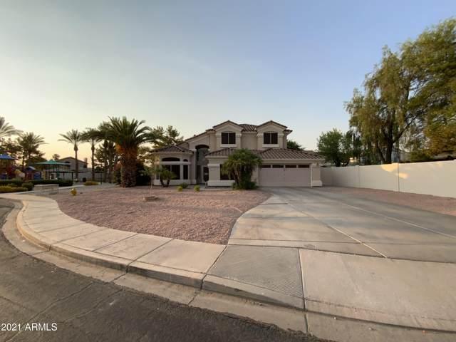 557 W Johnson Drive, Gilbert, AZ 85233 (MLS #6252605) :: CANAM Realty Group