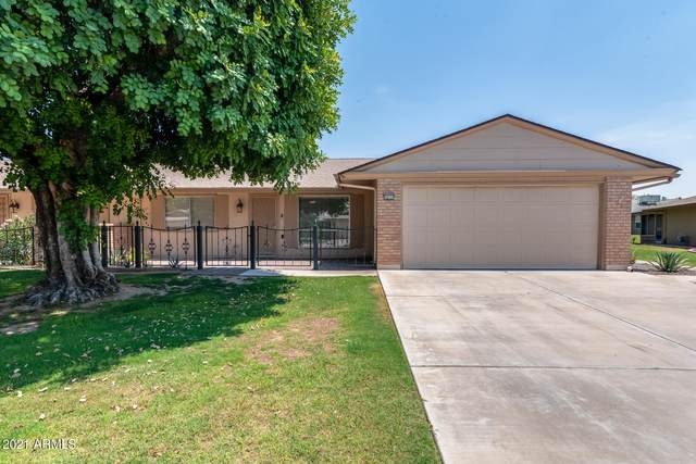10114 W Royal Oak Road, Sun City, AZ 85351 (MLS #6252611) :: Walters Realty Group
