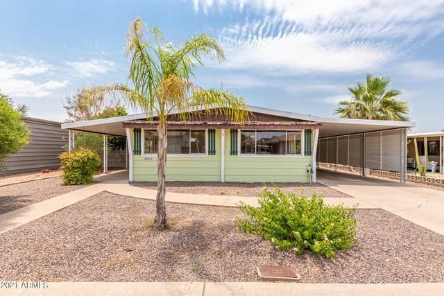 3243 E Kings Avenue, Phoenix, AZ 85032 (MLS #6252647) :: Selling AZ Homes Team