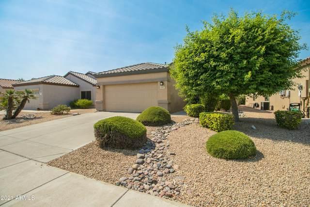 16497 W Rock Springs Lane, Surprise, AZ 85374 (MLS #6252648) :: Executive Realty Advisors