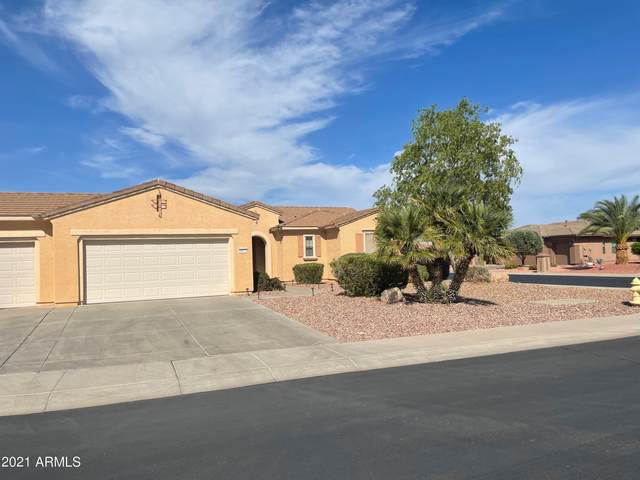 16672 W Garwood Court, Surprise, AZ 85387 (MLS #6252650) :: Yost Realty Group at RE/MAX Casa Grande