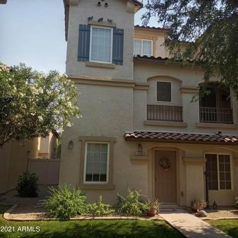1339 S Owl Drive, Gilbert, AZ 85296 (MLS #6252654) :: Conway Real Estate