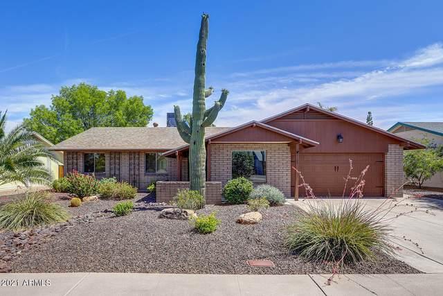 3107 E Sierra Street, Phoenix, AZ 85028 (MLS #6252659) :: Openshaw Real Estate Group in partnership with The Jesse Herfel Real Estate Group