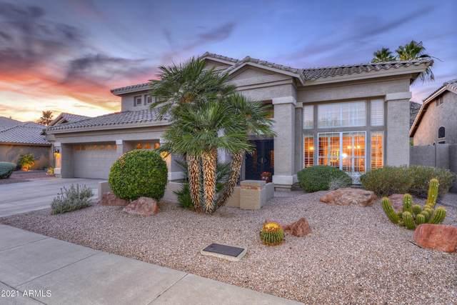 6290 W Donald Drive, Glendale, AZ 85310 (MLS #6252661) :: Yost Realty Group at RE/MAX Casa Grande