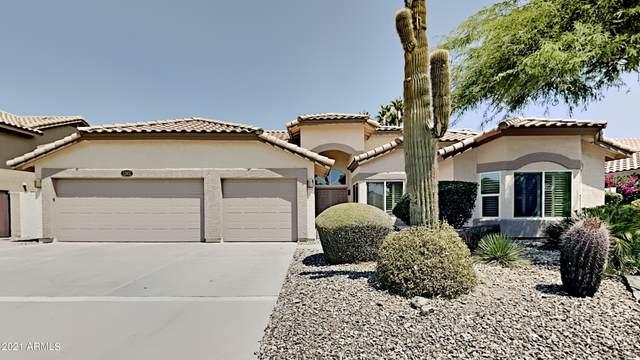 1362 W Muirwood Drive, Phoenix, AZ 85045 (MLS #6252695) :: Dave Fernandez Team | HomeSmart