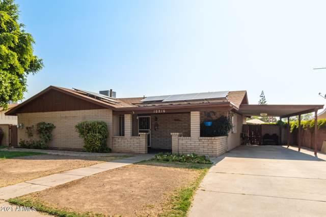 10816 N 33rd Drive, Phoenix, AZ 85029 (MLS #6252696) :: Yost Realty Group at RE/MAX Casa Grande