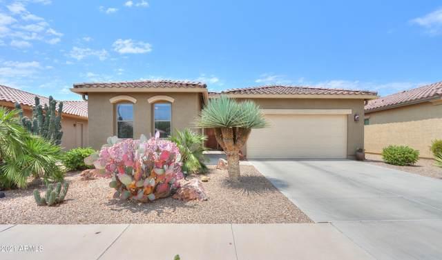 2665 E Santa Maria Drive, Casa Grande, AZ 85194 (MLS #6252701) :: Keller Williams Realty Phoenix
