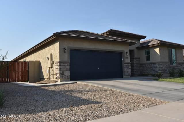 37479 W Frascati Avenue, Maricopa, AZ 85138 (MLS #6252725) :: CANAM Realty Group