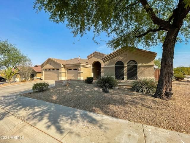 6342 W Rowel Road, Phoenix, AZ 85083 (MLS #6252735) :: Executive Realty Advisors