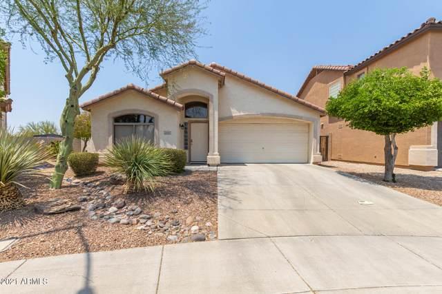 2546 W Red Fox Road, Phoenix, AZ 85085 (MLS #6252742) :: Dave Fernandez Team | HomeSmart