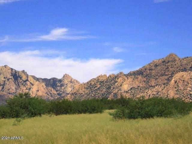tbd E De Vaca Cliffs, Saint David, AZ 85630 (MLS #6252775) :: The Garcia Group