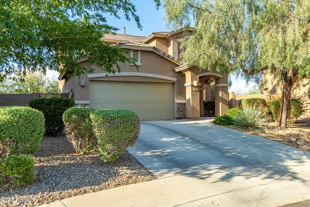 7352 W Kings Avenue, Peoria, AZ 85382 (MLS #6252784) :: Yost Realty Group at RE/MAX Casa Grande