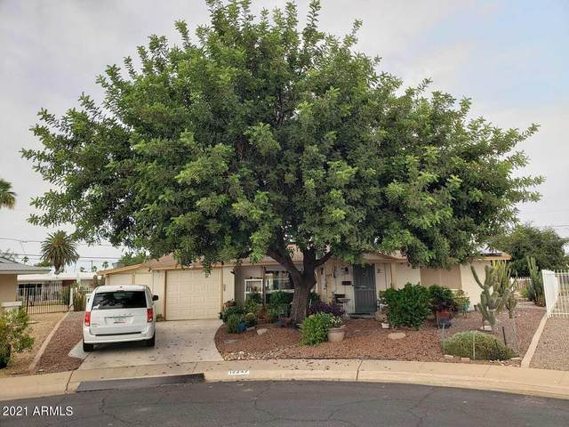 12247 N Thunderbird Road, Sun City, AZ 85351 (MLS #6252795) :: The Daniel Montez Real Estate Group