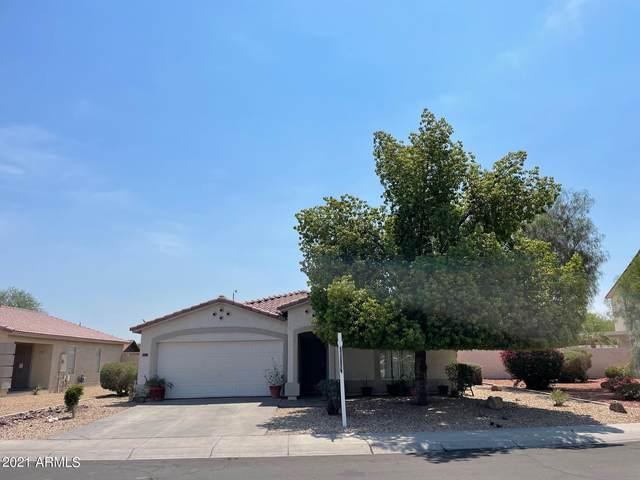 5789 N 73rd Drive, Glendale, AZ 85303 (MLS #6252811) :: The Laughton Team