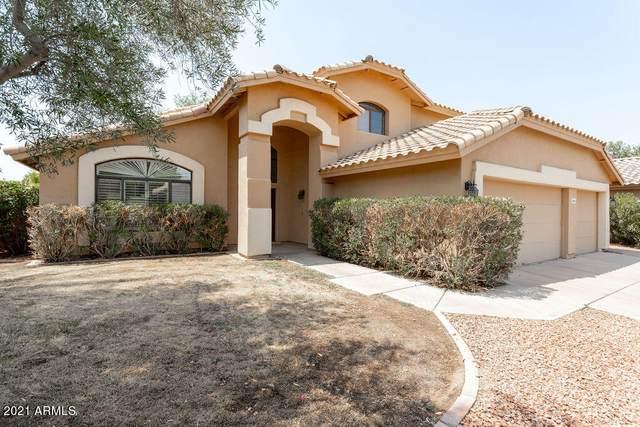 1244 N Hazelton Drive, Chandler, AZ 85226 (MLS #6252813) :: Dave Fernandez Team | HomeSmart