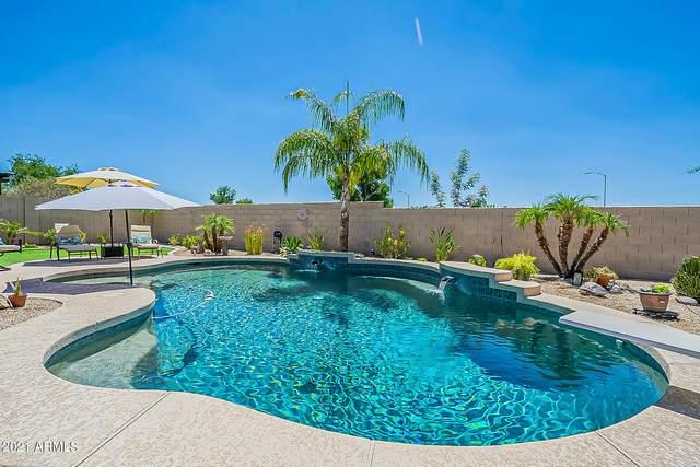 10413 E Laguna Azul Avenue, Mesa, AZ 85209 (MLS #6252829) :: The Helping Hands Team