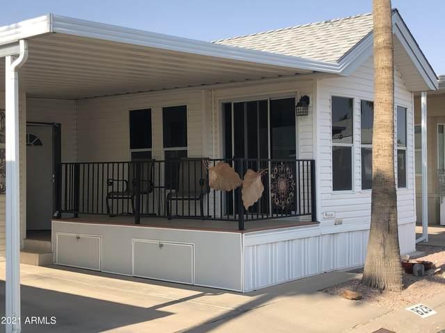 828 S Beryl Drive, Apache Junction, AZ 85119 (MLS #6252831) :: The Copa Team | The Maricopa Real Estate Company