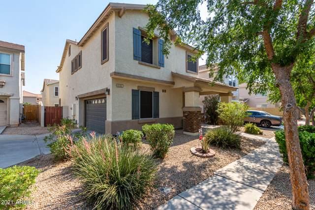 4141 E Orchid Lane, Gilbert, AZ 85296 (MLS #6252838) :: Yost Realty Group at RE/MAX Casa Grande