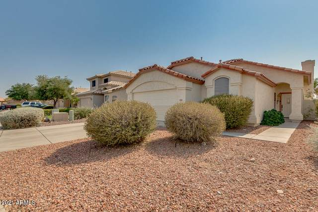 20298 N 98TH Lane, Peoria, AZ 85382 (MLS #6252857) :: Openshaw Real Estate Group in partnership with The Jesse Herfel Real Estate Group