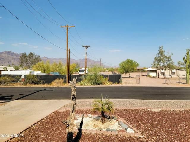 2206 S Vista Road, Apache Junction, AZ 85119 (MLS #6252862) :: Keller Williams Realty Phoenix