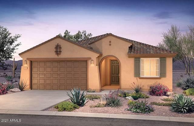 25920 W Tina Lane, Buckeye, AZ 85396 (MLS #6252868) :: The Daniel Montez Real Estate Group