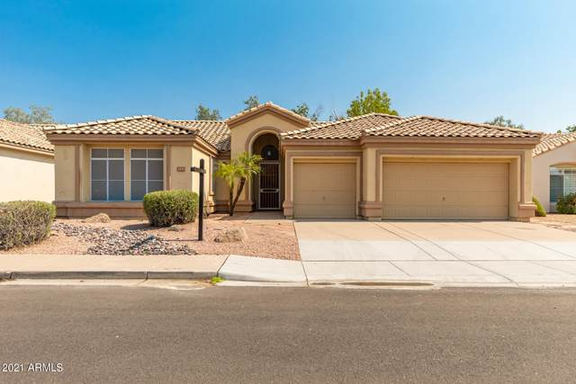 3171 W Laredo Street, Chandler, AZ 85226 (MLS #6252881) :: Dave Fernandez Team | HomeSmart