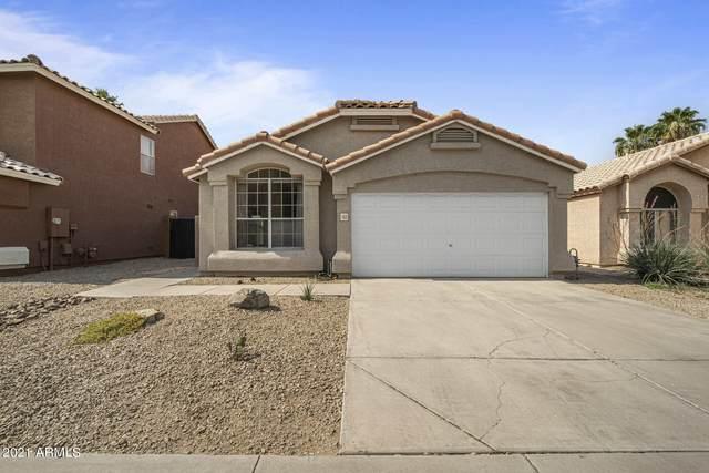 1153 W Bluebird Drive, Chandler, AZ 85286 (MLS #6252911) :: CANAM Realty Group