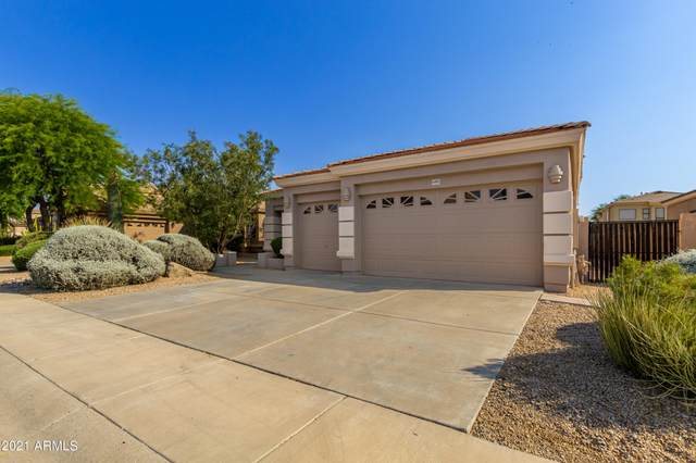4903 E Daley Lane, Phoenix, AZ 85054 (MLS #6252918) :: CANAM Realty Group