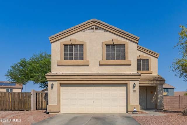 1517 S 230TH Drive, Buckeye, AZ 85326 (MLS #6252945) :: Executive Realty Advisors