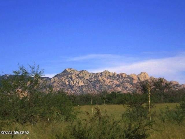 tbd E Horse Ranch Road, Saint David, AZ 85630 (MLS #6252969) :: The Ellens Team
