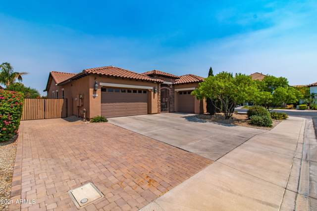 3451 S Halsted Place, Chandler, AZ 85286 (MLS #6253017) :: Executive Realty Advisors